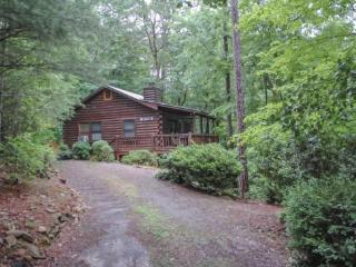 WINDCHIME- 2BR/1BA, SLEEPS 6, HOT TUB, WOODBURNING FIREPLACE,WASHER/DRYER, WINDOW A/C, CHARCOAL GRILL, PET FRIENDLY, WALKING DIS - Blue Ridge vacation rentals