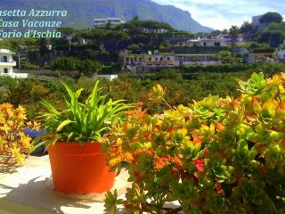 Casetta Azzurra - Forio vacation rentals