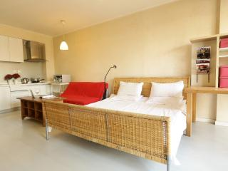 Yuanjia apt (tour available) - Beijing vacation rentals