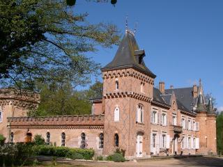 Château les Muids - Orleans vacation rentals