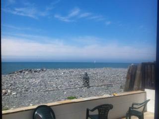 Large family beach house - Borth vacation rentals