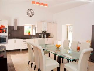 Villa PierManuel sleeps 8-12 - Figueiro dos Vinhos vacation rentals