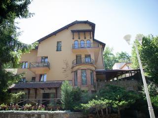 Sunflower Villa - Hunedoara vacation rentals