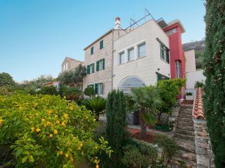 Unique Villa on Vis - Vis vacation rentals