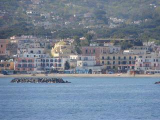 TU E IL MARE - Ischia Porto vacation rentals