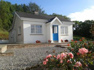 Cottage near Blackwater river - Aglish vacation rentals