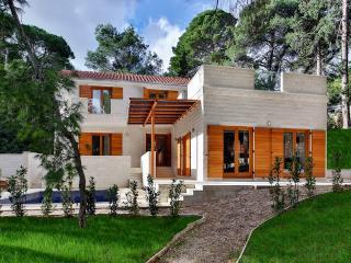 Villa Bianco - Rogac vacation rentals