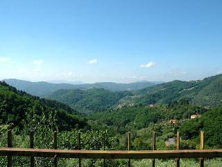 House Isabella - Pescaglia vacation rentals