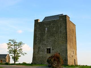 Killahara Castle - Thurles vacation rentals