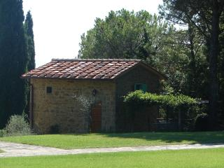 The Nest.Small house with pool - San Giustino Valdarno vacation rentals