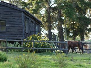 Angels Rest Farm, peaceful self-catering cabin - Plettenberg Bay vacation rentals