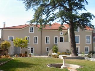 La Villa des Charmilles chambres d'hôtes - Vernoux-en-Vivarais vacation rentals
