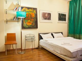 Vanguard apartment for small group - Moscow vacation rentals