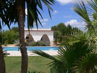 Villa TaLu -WiFi Internet-privat pool and garden - San Vito dei Normanni vacation rentals