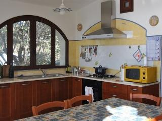 Apt for 4 in front of the sea - Cala Liberotto vacation rentals