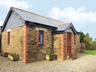 The Old Workshop - Boscastle vacation rentals