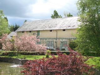 Le Cormier - Gîte & 3 Studios - Loches vacation rentals