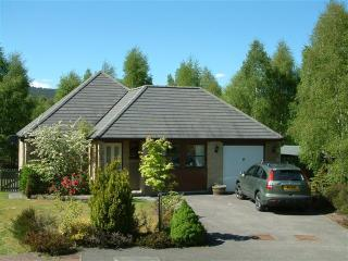 Falcon Lodge, Aviemore, Scotland - Aviemore vacation rentals
