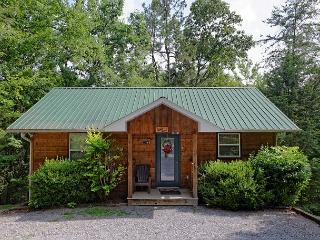 Secluded 1 Bedroom Birds Creek Cabin on the River with Hot Tub and Jacuzzi - Sevierville vacation rentals