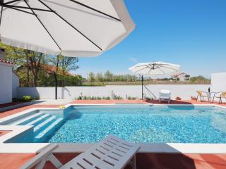 Apartment Angelo with pool - Privlaka vacation rentals