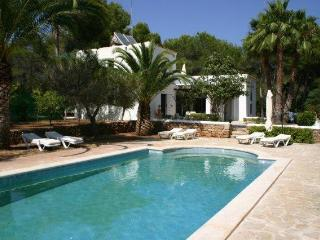 Amazing Villa close to Dalies - Sant Carles de Peralta vacation rentals