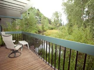 Riverside C 03 - 2 Bd / 2 Ba - Sleeps 6 - Deluxe Condo - Ideal Summer or Winter Location for Festivals or Skiing - Ridgway vacation rentals