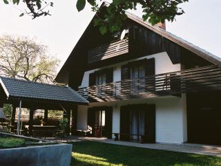 Appleby - Bohinjska Bistrica vacation rentals