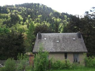 Le Bois Joli 2 ch - La Bourboule vacation rentals