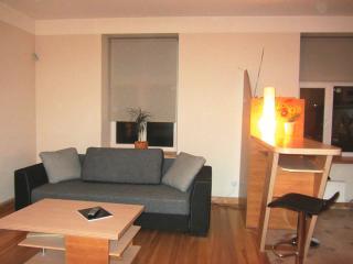 Riga center apartment 1 bdr - Riga vacation rentals