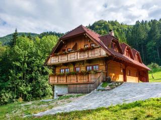 Hilltop Appartments on the Farm Petek - Gornji Grad vacation rentals