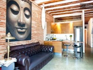 CENTER CITY FLAT/ TERRACE VIEW - Barcelona vacation rentals
