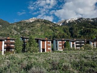 Powder Paradise at Perfect Price - Teton Village vacation rentals