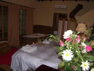 Cultivated Wild Johannesburg at African Silhouette - Johannesburg vacation rentals