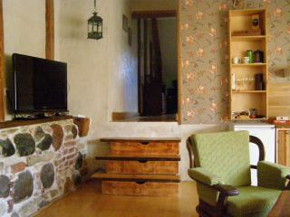Cosy city center apartment - Parnu vacation rentals