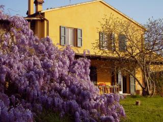 Tuscany sea&countryside - Castagneto Carducci vacation rentals