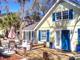 Night Hawk 3 - Hilton Head vacation rentals