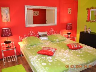 Bruxelles centre Halle St Gery0 - Brussels vacation rentals