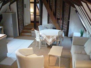 Gîte du vieux Tours Rôtisserie - Tours vacation rentals
