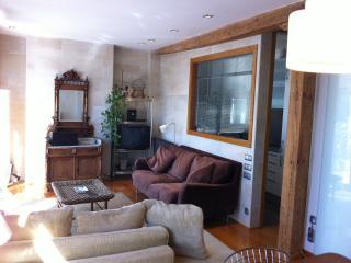 PENTHOUSE WITH  BIG TERRACE - San Sebastian - Donostia vacation rentals