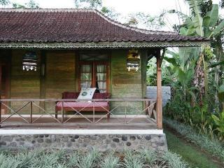 Tropical Hideaway - Baturiti vacation rentals