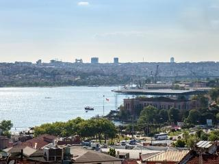 Best price!  Beyoglu,style,comfortbl,sea view flat - Istanbul vacation rentals