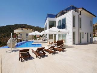Sunshine Villa 6 Bedrooms (FREE CAR OR TRANSFER) - Kalkan vacation rentals