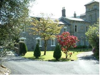 Coed y Celyn Hall  (6) - Betws-y-Coed vacation rentals