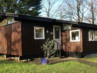 Derwen Lodge - Newcastle Emlyn vacation rentals