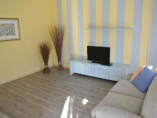 Suite Blue Lakes and Mounts - Stresa vacation rentals