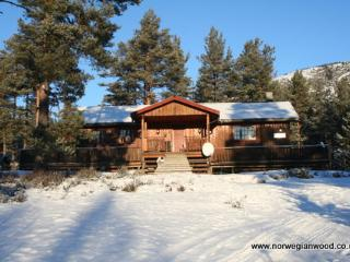 Norwegian Wood Cabin - Amli vacation rentals