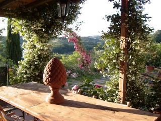 COUNTRY FARM HOUSE FLORENTINE - Scandicci vacation rentals