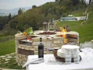 Luxury 2 bedroom villa Tuscany - BFY13507 - Castellina In Chianti vacation rentals