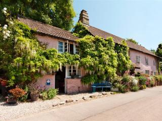 Traditional Devon Cottage in River Dart village - Galmpton vacation rentals