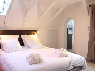 Gîte du Vieux Tours L' Horloge - Tours vacation rentals